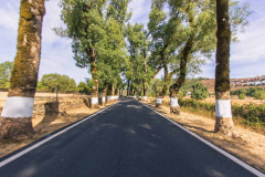 Bike Tour in Alentejo - Heritage and Wine Country - copy