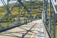 Full Day Bike Tour in Douro Valley - 04