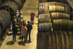 Touring Douro Wine Country - copy